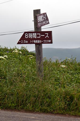 礼文島4時間トレッキングコース
